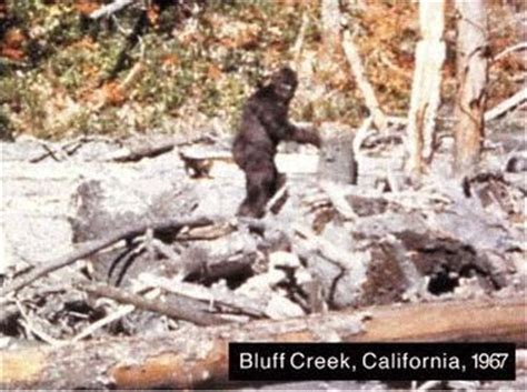 Watch these great Bigfoot documentaries based on the