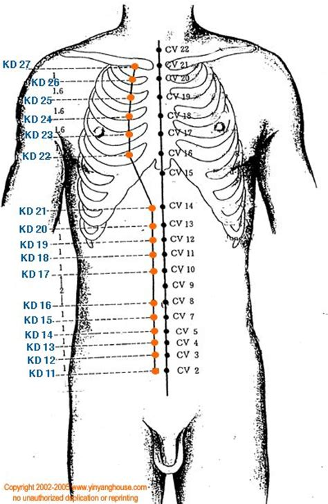 78+ images about Acupuncture points & Meridians on